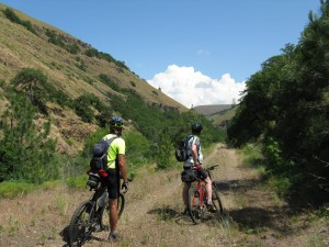 Swale Canyon Ride